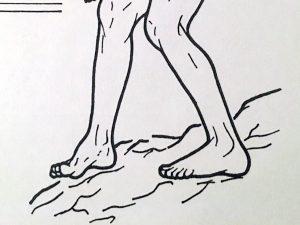 デコボコの上の歩行